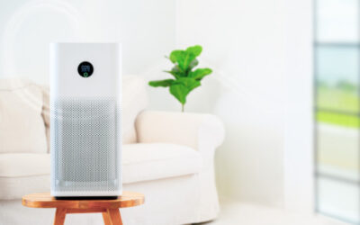 What to Look Out for When Purchasing an Air Purifier