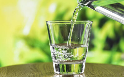 Four Reasons Your Water Smells Bad