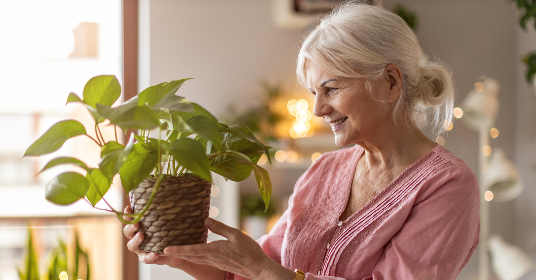 Air Purification Systems: Minimizing the risk of COVID-19 in your home and other health benefits